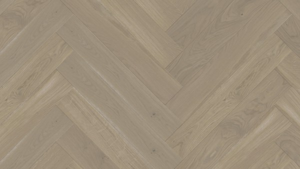 WP 475 Ei.Auster lebhaft bunt (spektrum) gef.geb.ProActive + - WP 65021 VHA